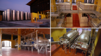 A new complete plant for I Magredi wineries